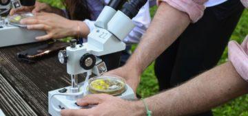 microbiology major microscopes outside