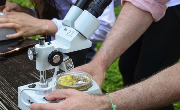 microbiology major microscopes outside